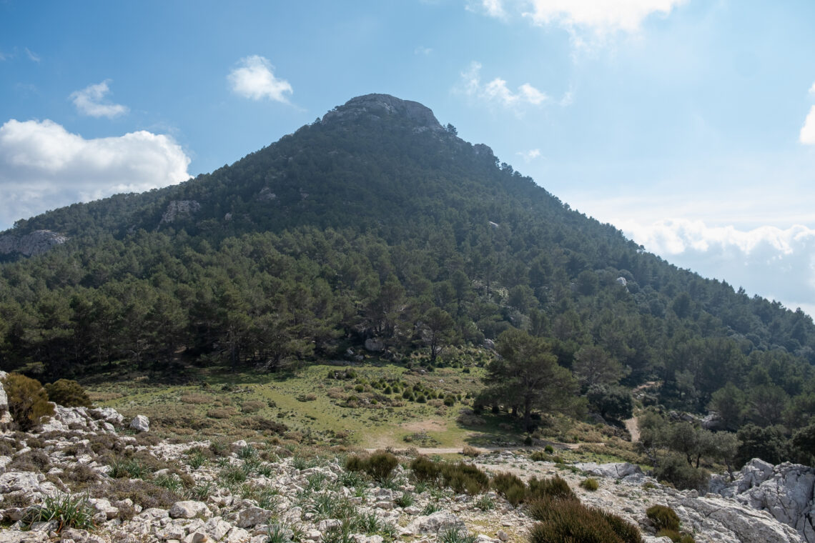 Puig de L'Ofre
